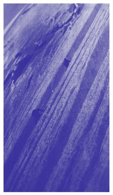 P1060015-blue.jpeg